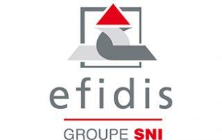 Logo Efidis
